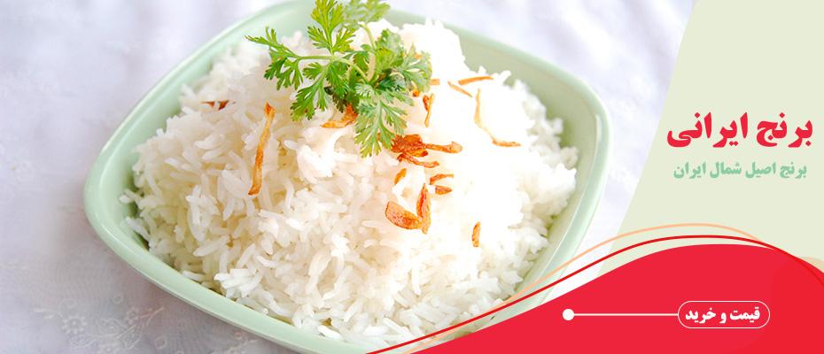rice-iranian